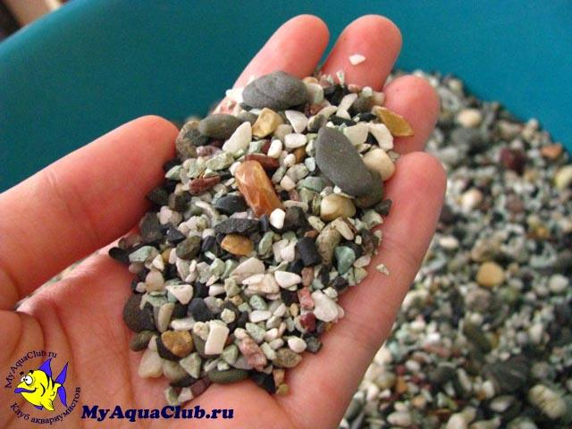 Аквариумный грунт для растений своими руками