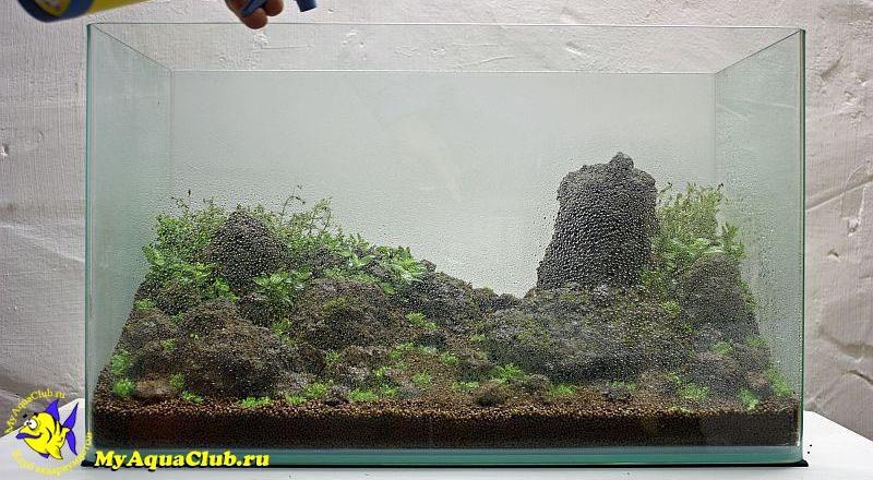 Можно ли сажать аквариумные растения в обычную землю универсальную 13